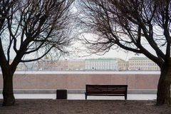 Classic bench on under the trees, in saint-petersburg Stock Photography