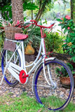 Classic bikes. Parked in the garden Royalty Free Stock Photo