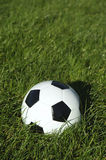 Classic Black and White Soccer Ball Football on Green Grass Royalty Free Stock Photography