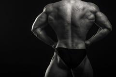 Classic bodybuilder Royalty Free Stock Image
