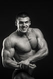 Classic bodybuilder Royalty Free Stock Image