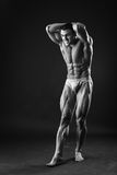Classic bodybuilder Stock Photography