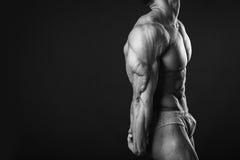 Classic bodybuilder Stock Images