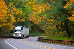Classic bonneted semi truck ribbed trailer on road autumn forest Royalty Free Stock Images