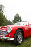 Classic British sports car. Front view of red Austin Healey 3000, classic British sports car of the 60's Royalty Free Stock Photography