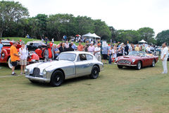 Classic British sports cars driving on grass Royalty Free Stock Photo