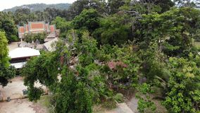 Classic Buddhist temple between forest. From above drone view classic Buddhist monastery between green trees near hill. In Thailand. Koh Samui. concept of stock video footage