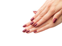 Classic burgundy manicure Stock Photo