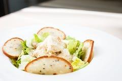 Classic Caesar salad Stock Image