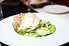 Classic Caesar salad Royalty Free Stock Photography