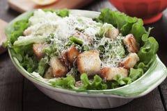 Classic caesar salad Stock Images