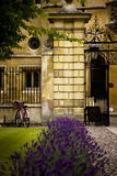 Classic Cambridge University Scene Royalty Free Stock Photos