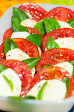 Classic caprese salad Royalty Free Stock Photography
