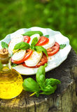 Classic Caprese Salad Royalty Free Stock Photo