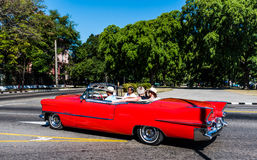 Classic Car Tour - Havana, Cuba. Fedora wearing Cuban takes tourists on tour of Havana, Cuba in a classic red convertible with the top down Stock Image