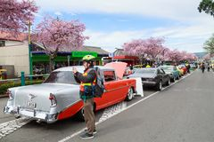 A row of vintage automobiles on the street stock image