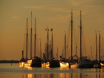 Classic Charter sailboats in sunset Royalty Free Stock Photography