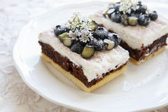 Classic Chester Cake slices with blueberries and Cilantro flower Stock Images
