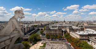 Classic chimera view of Paris from Notre Dame Royalty Free Stock Photos