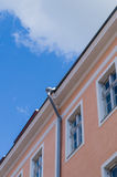 Classic city house with downpipe under blue sky Stock Photography