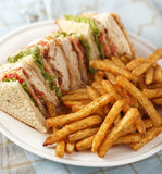 Classic club sandwich. Chicken club sandwich on a white plate with spicy french fries. Very Shallow depth of field Stock Images