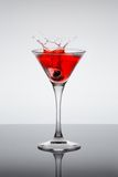 Classic contemporary cocktail Stock Photo