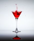 Classic contemporary cocktail Royalty Free Stock Images
