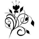Classic decorative vector black-and-white texture Royalty Free Stock Photos