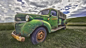 Classic Dodge Truck. An old classic 1955 dodge truck in a field Royalty Free Stock Photos