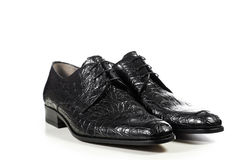 Classic elegant pair of male shoes in crocodile Royalty Free Stock Photography