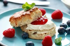 Classic English scones with clotted cream, strawberries jam and other fruit stock photography