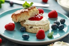 Classic English scones with clotted cream, strawberries jam and other fruit royalty free stock photos