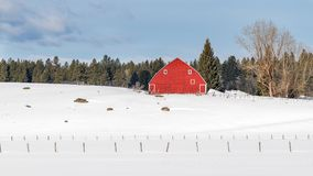 Bright red barn on an Idaho farm in winter with snow on the ground stock photography