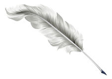 Classic feather quill illustration Royalty Free Stock Photos
