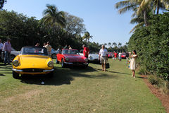 Classic ferrari sports cars lined up Royalty Free Stock Photography