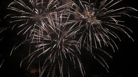 Classic fireworks in the sky stock footage