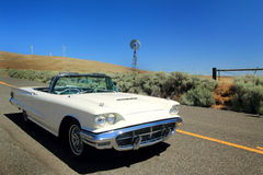 Classic 1960 Ford Thunderbird Convertible. A Classic 1960 shiny white Ford Thunderbird Convertible sitting in the sunshine on a country road out in the middle of Royalty Free Stock Photography