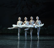 The classic Four Little Swan Dance-The Swan Lakeside-ballet Swan Lake Royalty Free Stock Photos