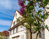 Classic french house in residential district of Strasbourg, blos Royalty Free Stock Photo