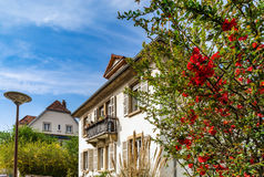 Classic french house in residential district of Strasbourg, blos Stock Images