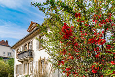 Classic french house in residential district of Strasbourg, blos Royalty Free Stock Images