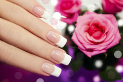 Classic French manicure. Royalty Free Stock Photo