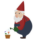 Classic garden gnome Royalty Free Stock Images