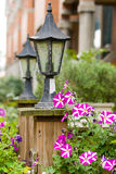 Classic garden lamp with blooming Petunia Royalty Free Stock Images