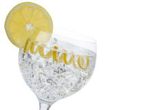 Classic gin and tonic with a lemon twist. Gin and tonic in a highball cup garnished with a lemon wedge and twist Royalty Free Stock Photos