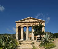 Classic Greek (Doric) Temple at Segesta Stock Photography