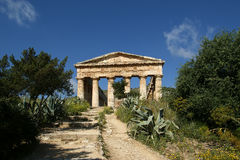 Classic Greek (Doric) Temple at Segesta in Sicily Royalty Free Stock Photo