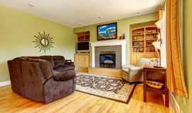 Classic green living room interior with fireplace. Stock Image