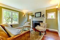 Classic green natural living room. Classic green natural living room with fireplace Stock Photo