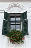 Classic green wooden window shutters and red flowers on a rural Stock Image